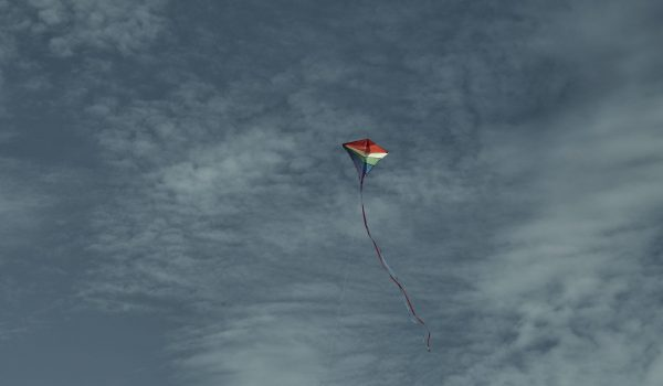 Beautiful kite in the sky against the background of clouds ©Adobstock
